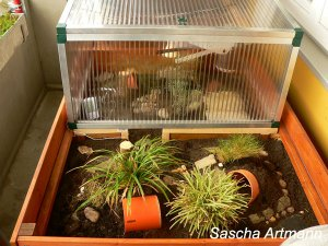 schildkrötengehege balkon selber bauen