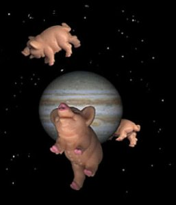 space%20schwein%20gross.jpg